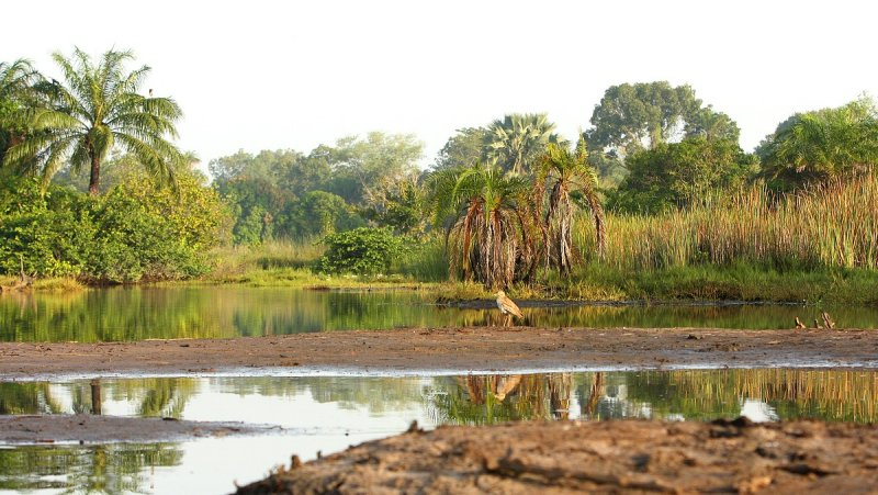Landscape Marakissa