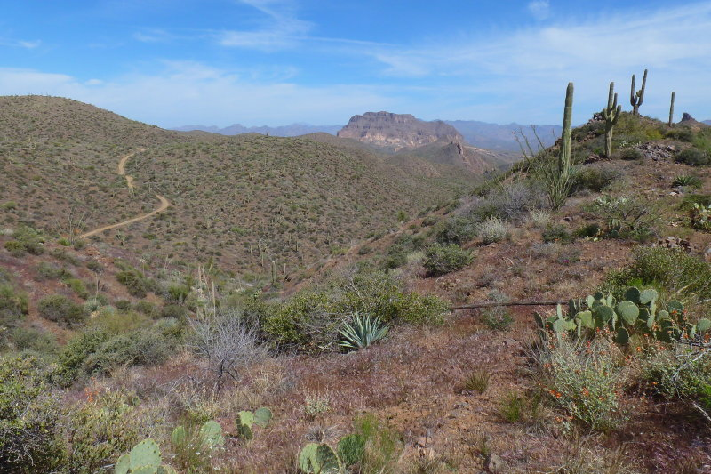 Tonto National Forest - FR 4