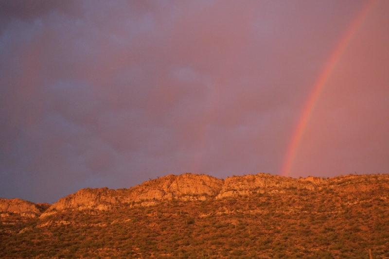 Rainbow near home