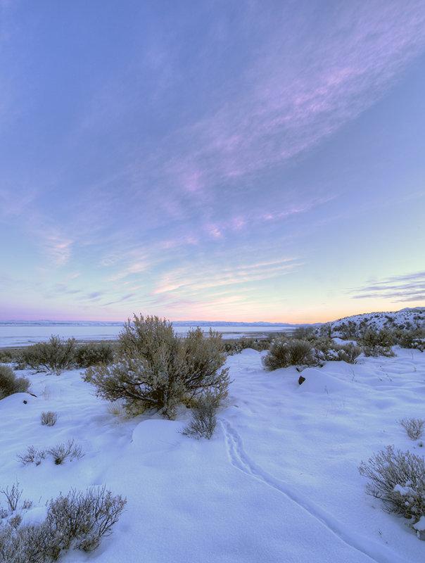 Alvord Desert 2013