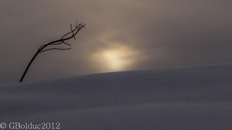 Paysage macro_Tiny winter landscape