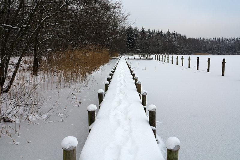 Brassø, Myrhuset winter 02