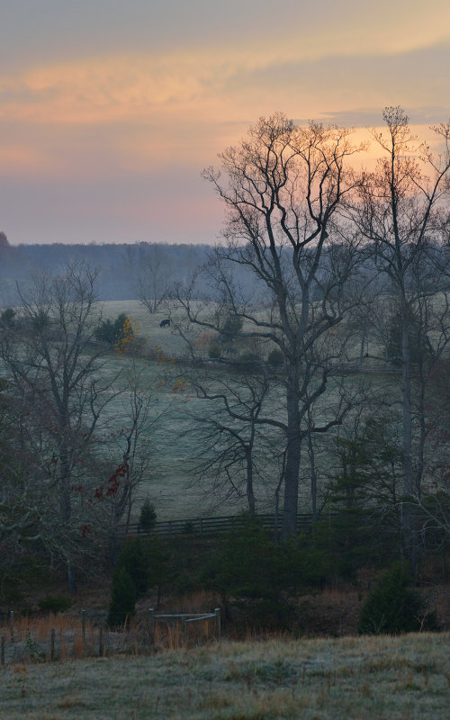 Northern VA Sunrise