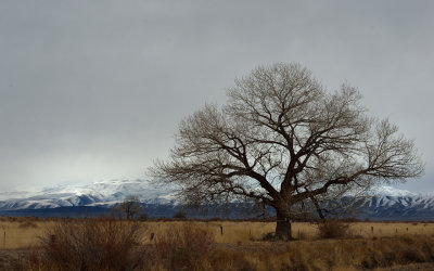 Storm Clearing, Fallon, NV