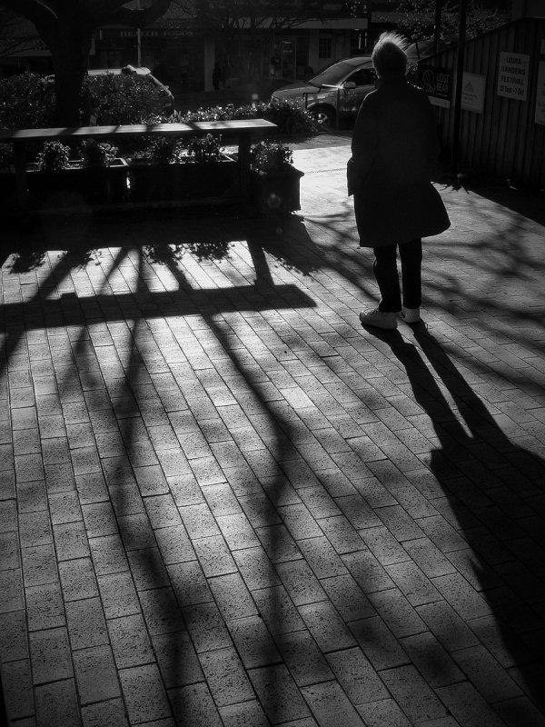 leura shadows w.jpg