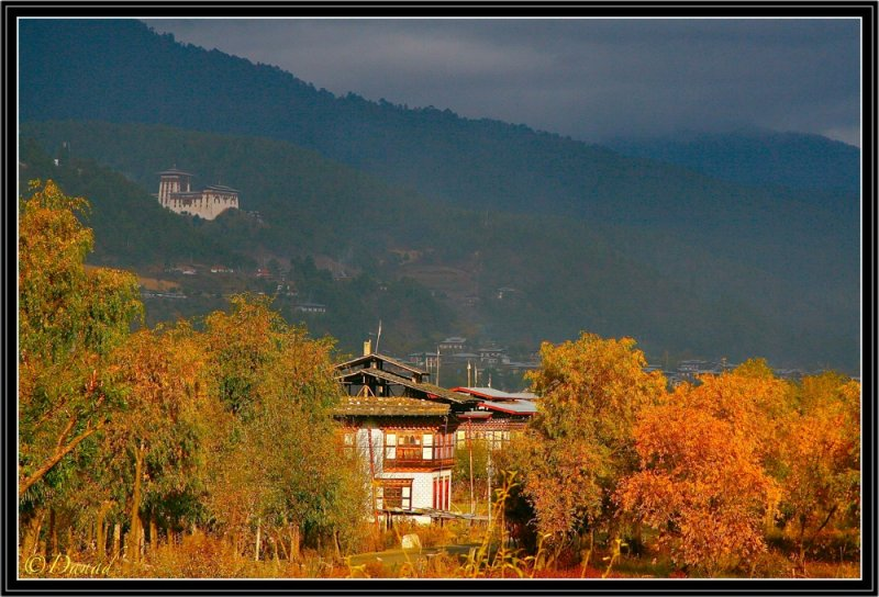 Bhumtang : End of afternoon on Jakar Dzong.