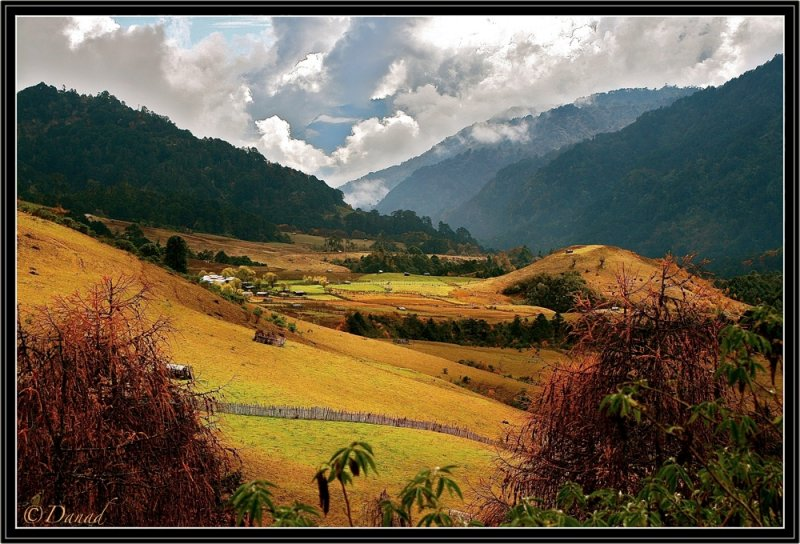 On the high lands of Bhutan.