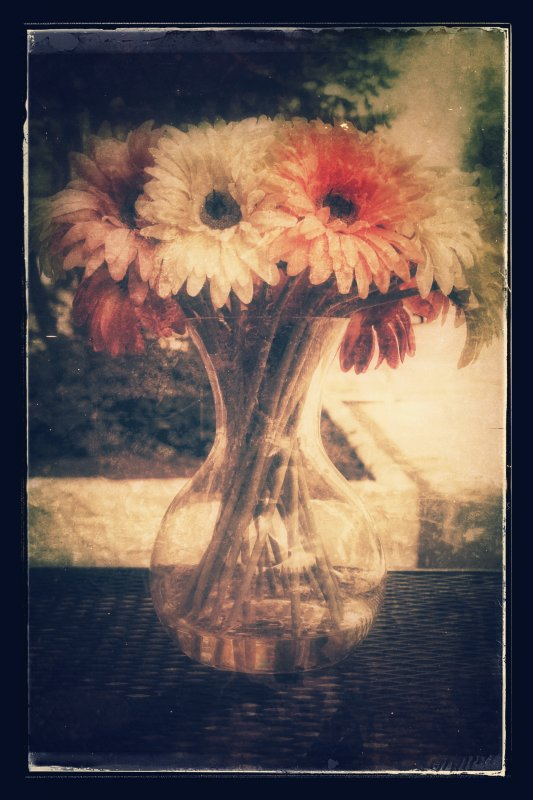 Antique Flowers