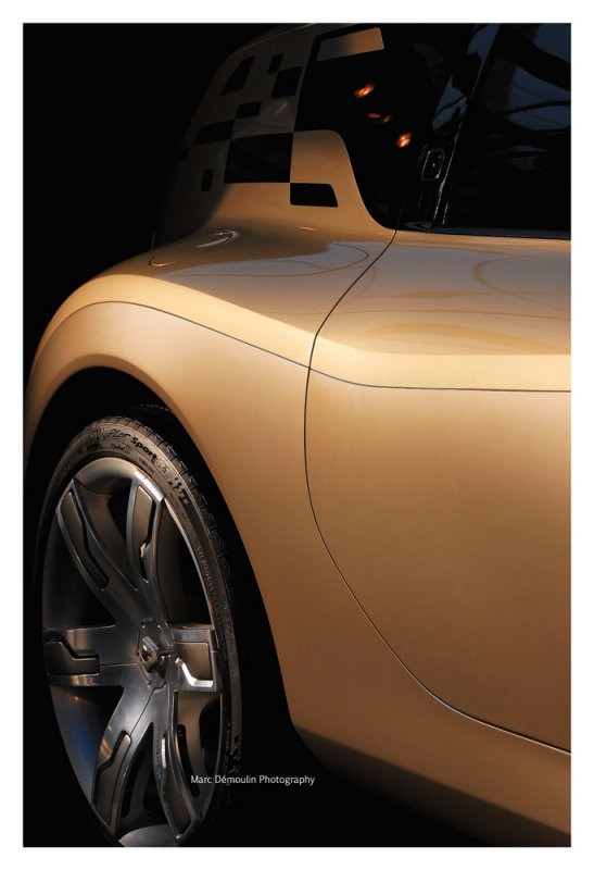 Renault Altica, Paris 2008