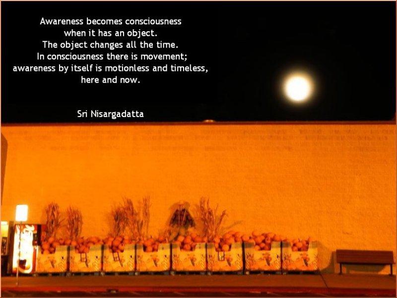 Awareness Becomes Consciousness