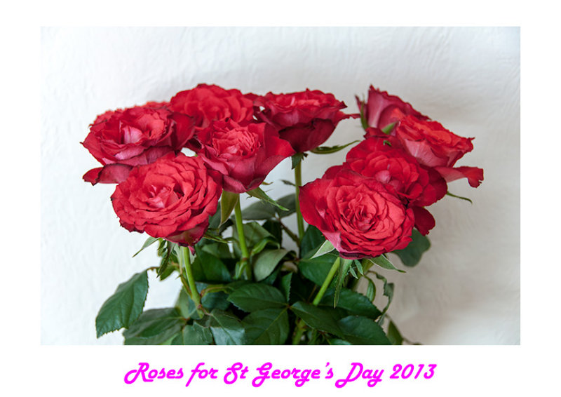 Roses for St Georges Day 2013