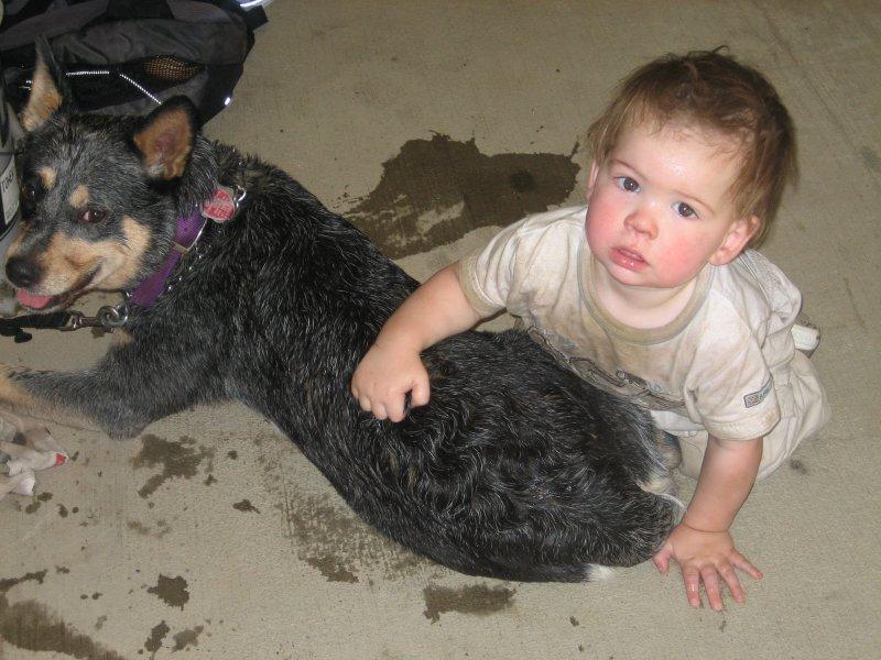 ultra dog & baby