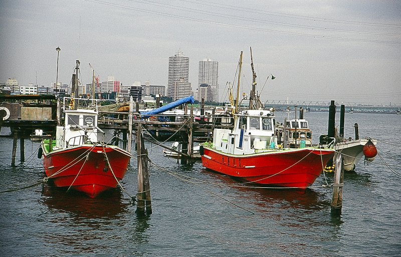 Twin Boats .. Twin Towers