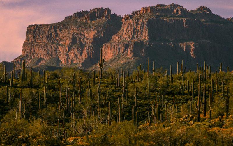 Superstition Mountains, Gold Canyon, Arizona, 2013