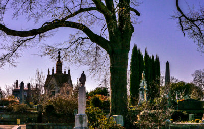 Spires and trees, Oakland Cemetery, Atlanta, Georgia, 2013