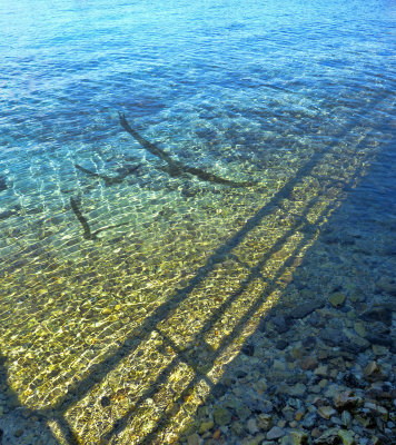 Shadows and reflections from the small pier...