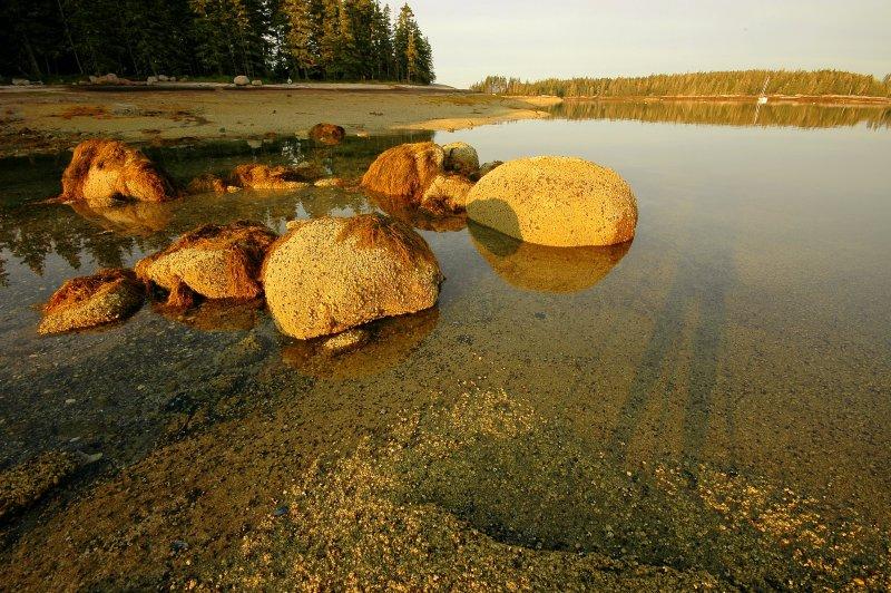 Rocks At Sunrise - Hells Half Acre Island