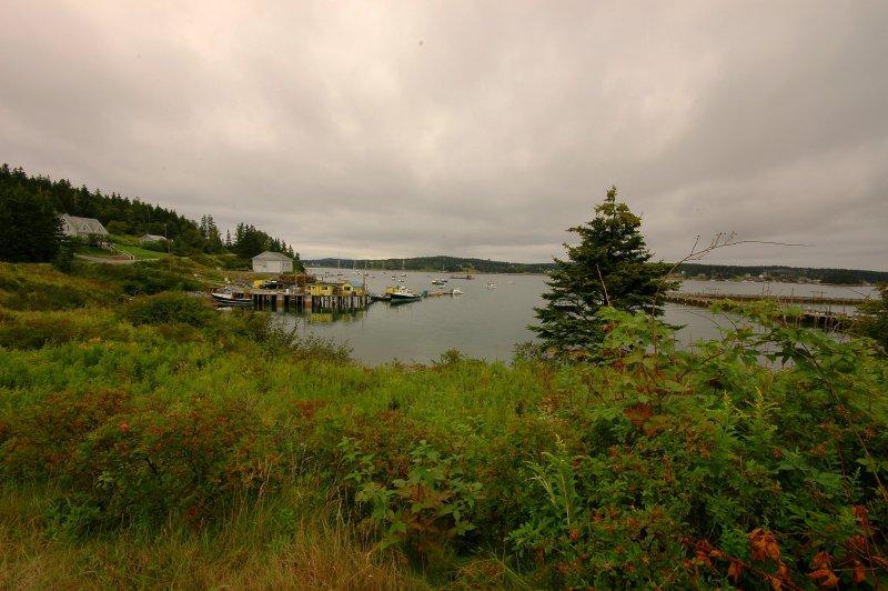 Burnt Coat Harbor