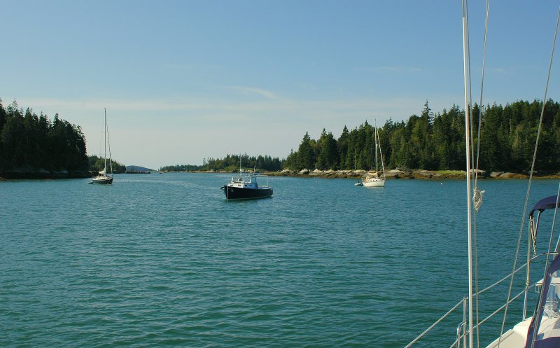Looking Out Of Long Cove - Vinalhaven Island
