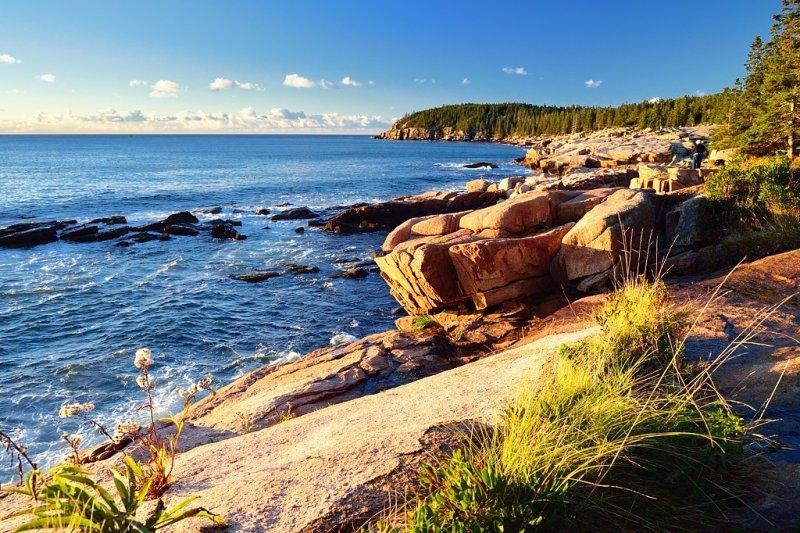 ACD_1797 Otter Cliffs