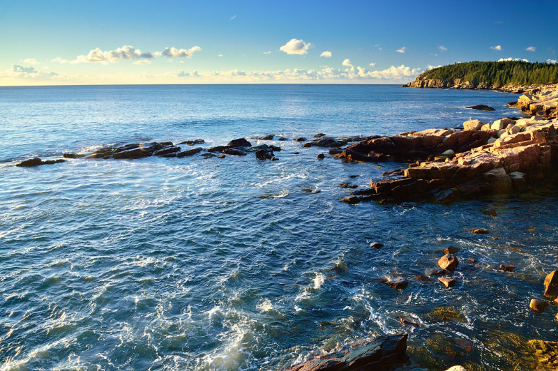 ACD_1807 Otter Cliffs