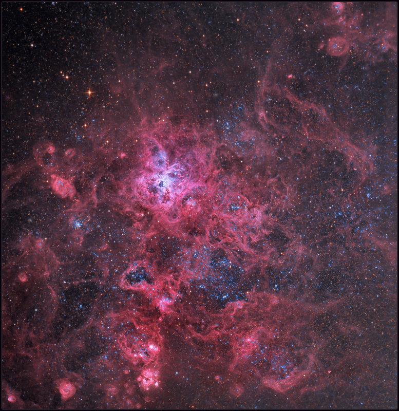 The Tarantula Nebula - NGC 2070