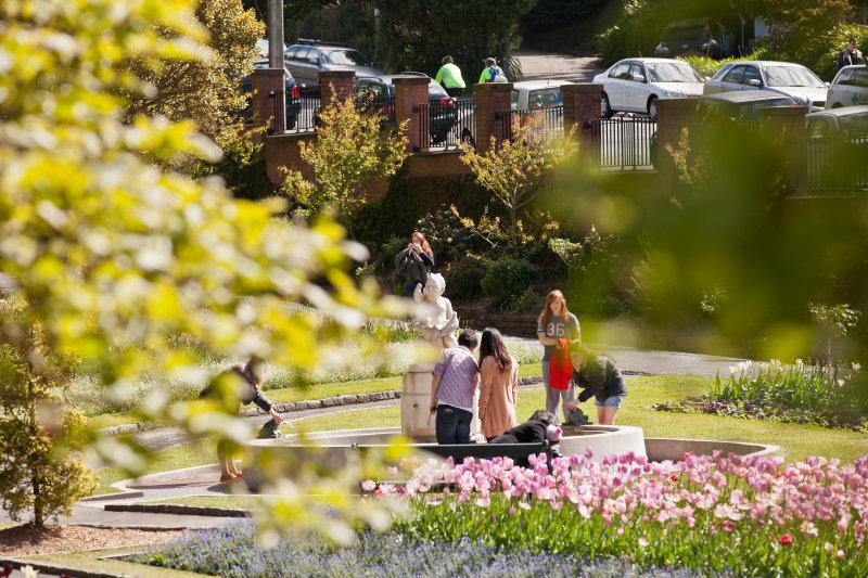 Wellington Botanical Gardens2.jpg
