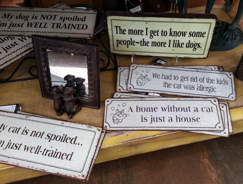 Dog Mirror Plus Signs