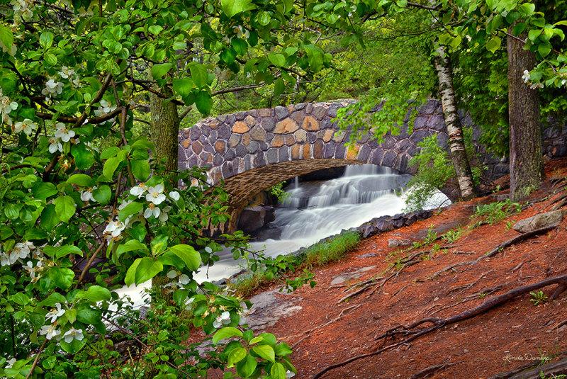 ** 3.1 - Duluth Parks:  Kingsbury Creek Bridge With Apple Tree