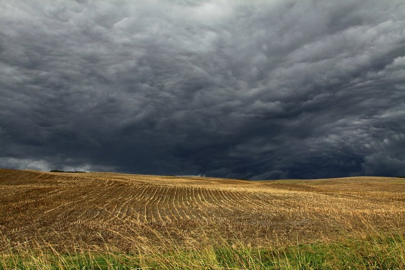 Stormy sky... but only a few spits of rain.