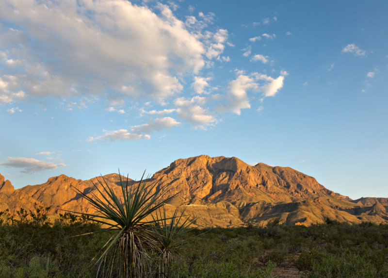 Chisos at Sunset