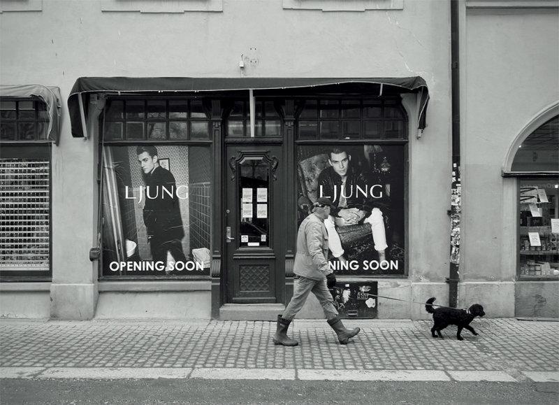 Ljung &  Ljung