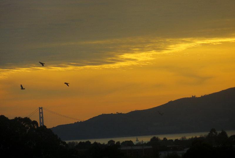 Sunset. Golden Gate Bridge. Day 3.  409mm-equiv, iso200, Superfine compression. 0269