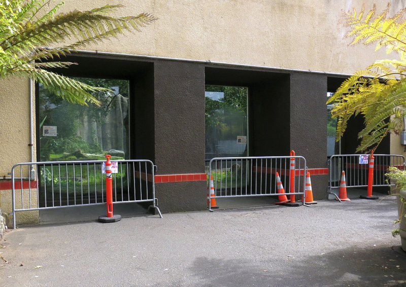 The side-window areas. Being painted. mImg_2570.jpg