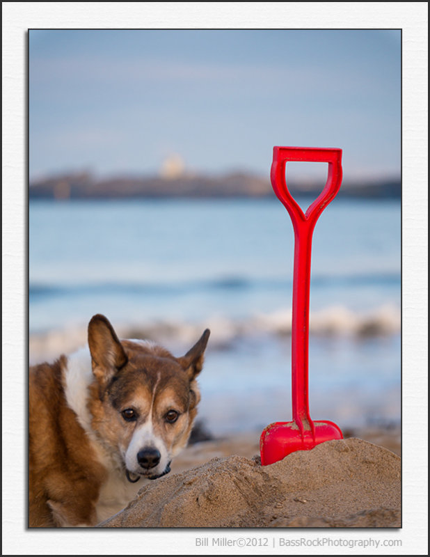 Mack and the Red Spade