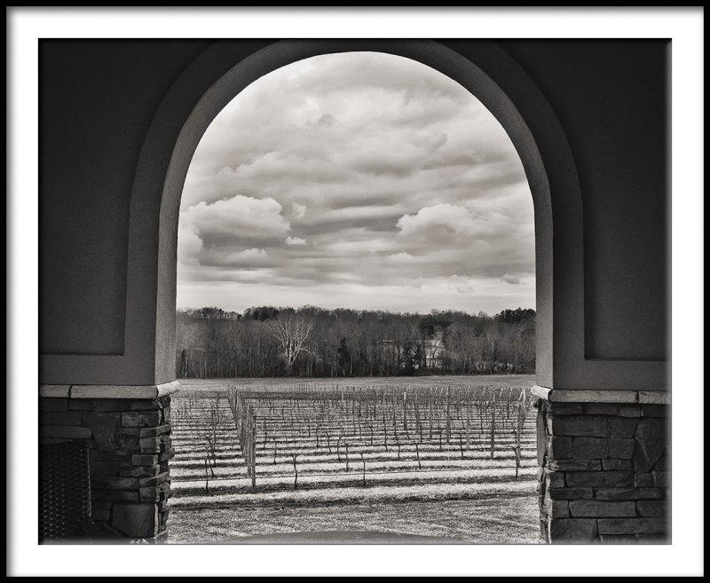 Vineyard Through the Arch/Winter Day