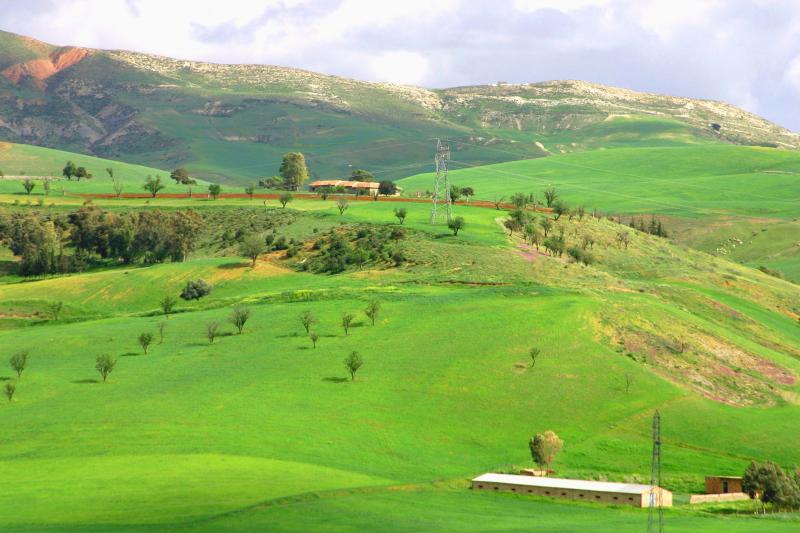 Medea,Algeria,so beautiful!