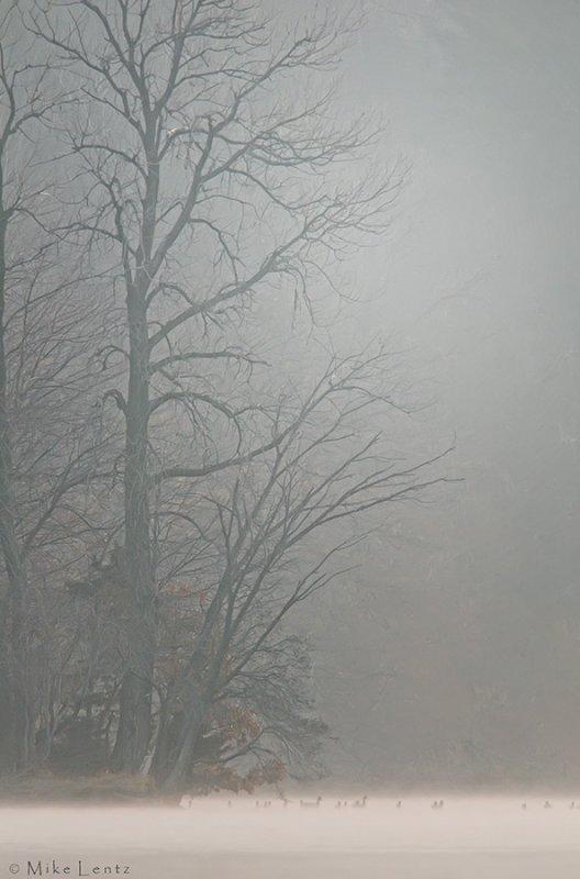Vadnais Lake foggy fall morning