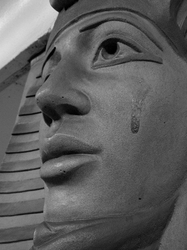Pharaohs Tears