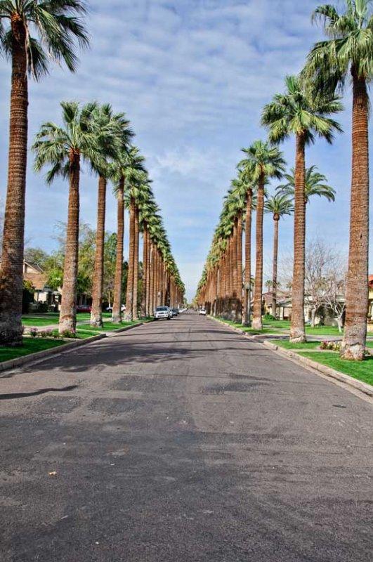 Neat Street