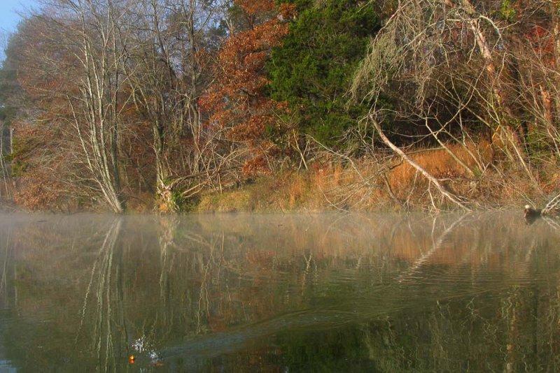 Fall fishing on Melton Hill Lake