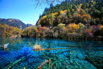 Five Flower Lake, Jiuzhaigou
