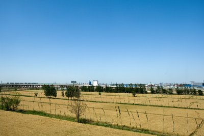 Vast agricultural land outskirt of the city (CWS9252)