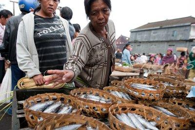 Fishmonger _CWS6165.jpg