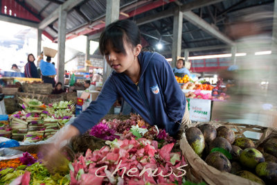Flower petals girl, petals used for ceremony and prayers _CWS6188.jpg