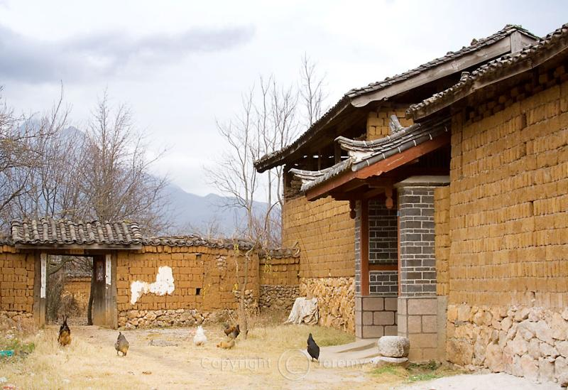 Baisha Village (Dec 05)
