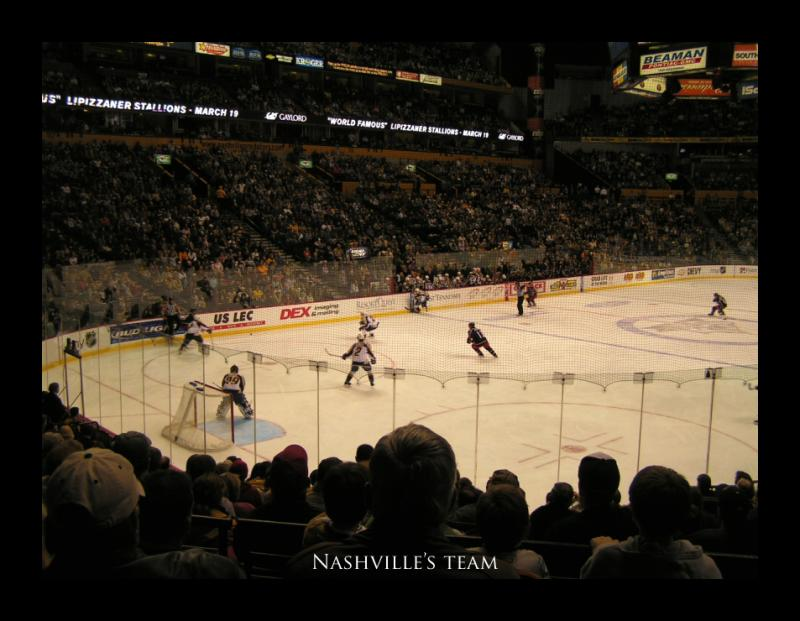 The Nashville Predators.  Nashvilles team.