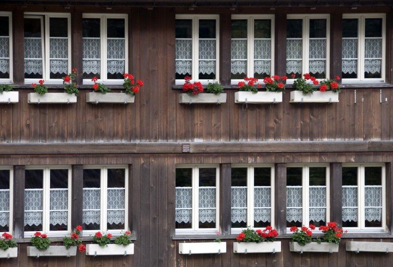 Swiss window boxes