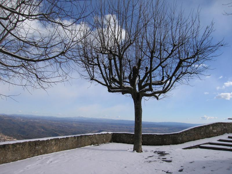 Trees and view from belvedere, above Berga