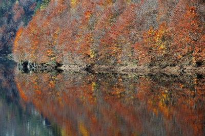Missoni like texture - Pontet - Trentino